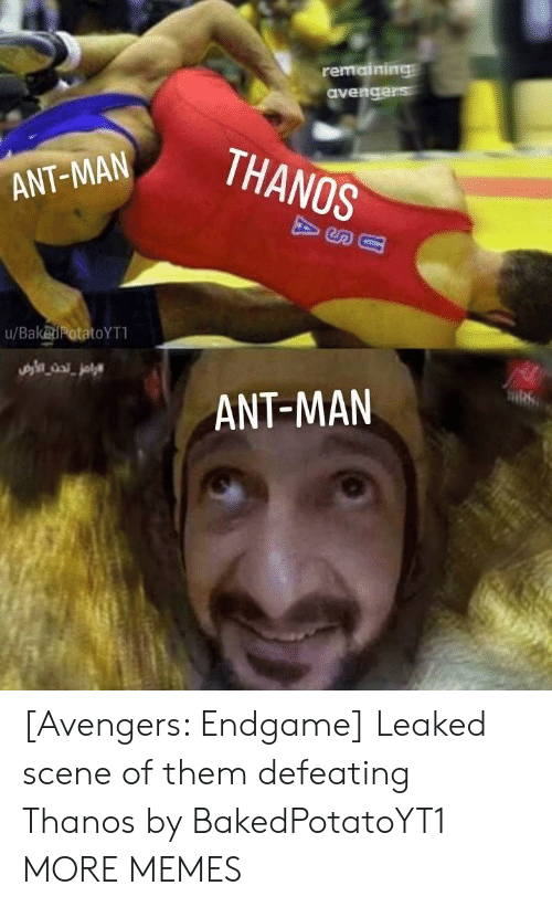 Dank, Memes, and Target: remaining  THANOS  ANT-MAN  u/BakedPotatoYT  ANT-MAN [Avengers: Endgame] Leaked scene of them defeating Thanos by BakedPotatoYT1 MORE MEMES