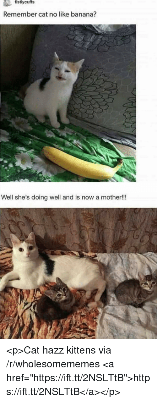 """Banana, Kittens, and Cat: Remember cat no like banana?  Well she's doing well and is now a mother!!! <p>Cat hazz kittens via /r/wholesomememes <a href=""""https://ift.tt/2NSLTtB"""">https://ift.tt/2NSLTtB</a></p>"""