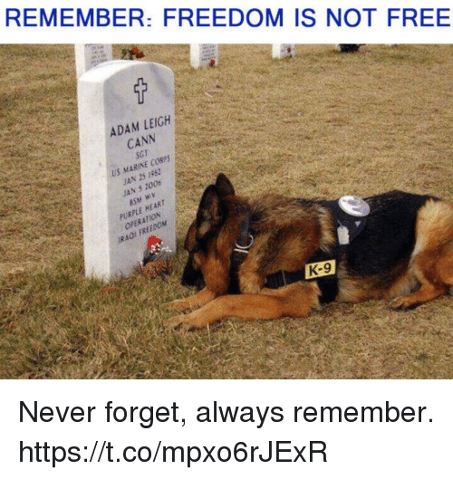 Memes, Free, and Heart: REMEMBER: FREEDOM IS NOT FREE  ADAM LEIGH  CANN  SGT  US MARINE CORSS  JAN 5 2006  PURPLE HEART  OPERATION  IRAOI FREEDOM  K-9 Never forget, always remember. https://t.co/mpxo6rJExR