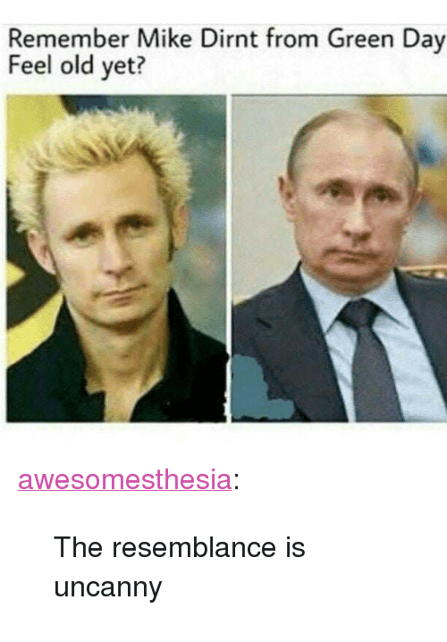 "Green Day: Remember Mike Dirnt from Green Day  Feel old yet? <p><a href=""http://awesomesthesia.tumblr.com/post/173123871507/the-resemblance-is-uncanny"" class=""tumblr_blog"">awesomesthesia</a>:</p>  <blockquote><p>The resemblance is uncanny</p></blockquote>"
