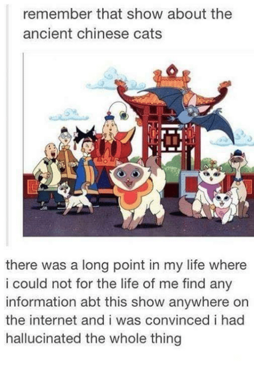 Cats, Funny, and Internet: remember that show about the  ancient chinese cats  there was a long point in my life where  i could not for the life of me find any  information abt this show anywhere on  the internet and i was convinced i had  hallucinated the whole thing