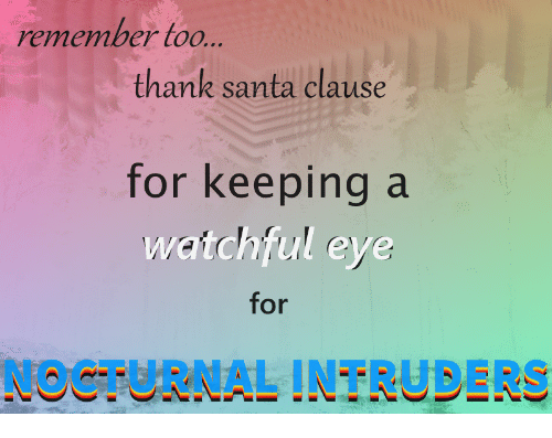 nocturnal: remember too  thank santa clavise  for keeping a  watchful eye  for  NOCTURNAL INTRUDERS