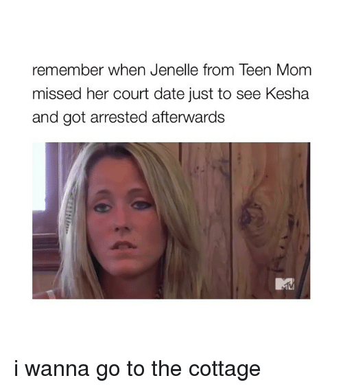 Kesha: remember when Jenelle from Teen Mom  missed her court date just to see Kesha  and got arrested afterwards i wanna go to the cottage