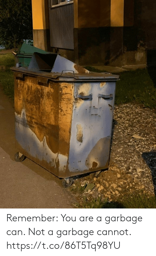 Faces-In-Things, Garbage, and Can: Remember: You are a garbage can. Not a garbage cannot. https://t.co/86T5Tq98YU