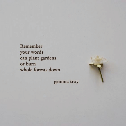 Troy, Can, and Down: Remember  your words  can plant gardens  or burn  whole forests down  gemma troy