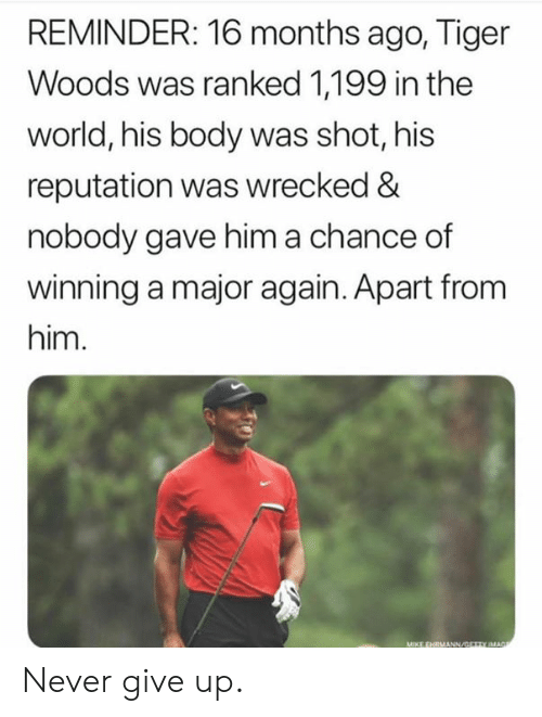 Tiger Woods, Tiger, and World: REMINDER: 16 months ago, Tiger  Woods was ranked 1,199 in the  world, his body was shot, his  reputation was wrecked &  nobody gave him a chance of  winning a major again. Apart from  him. Never give up.