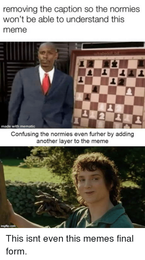 Meme, Another, and Made: removing the caption so the normies  won't be able to understand this  meme  1  1  made with mematic  Confusing the normies even furher by adding  another layer to the meme This isnt even this memes final form.