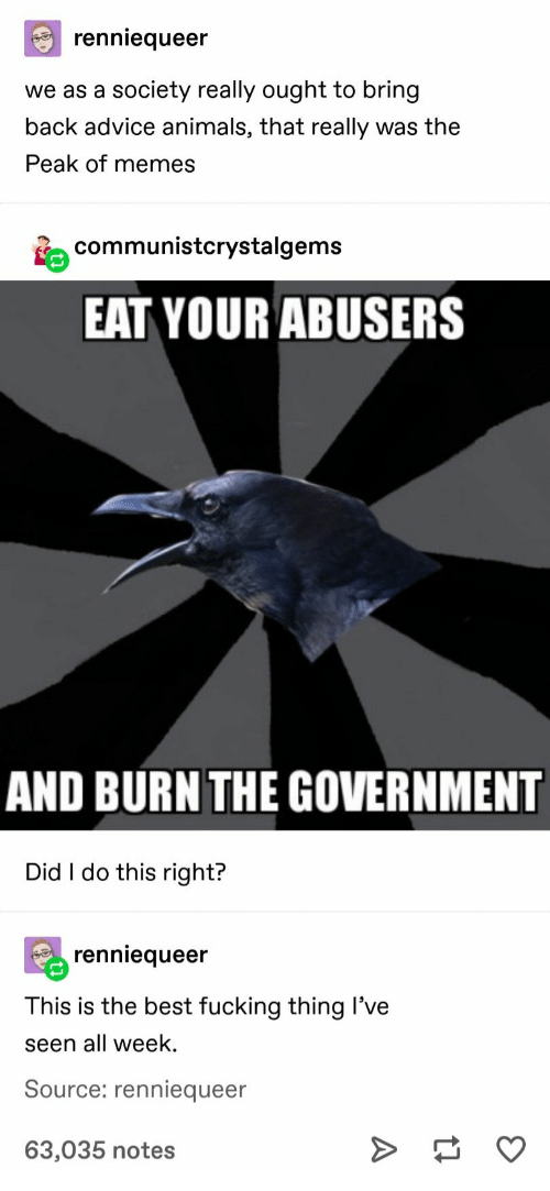 Advice, Animals, and Fucking: renniequeer  we as a society really ought to bring  back advice animals, that really was the  Peak of memes  communistcrystalgems  EAT YOUR ABUSERS  AND BURN THE GOVERNMENT  Did I do this right?  renniequeer  This is the best fucking thing I've  seen all week.  Source: renniequeer  63,035 notes