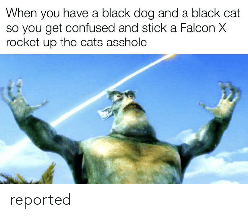 Reported: reported