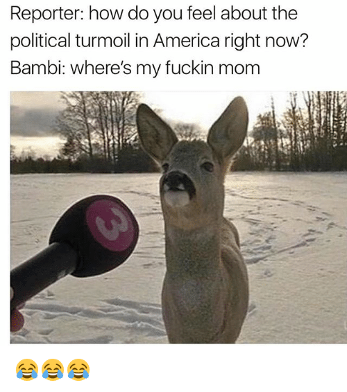Bambi: Reporter: how do you feel about the  political turmoil in America right now?  Bambi: where's my fuckin mom 😂😂😂