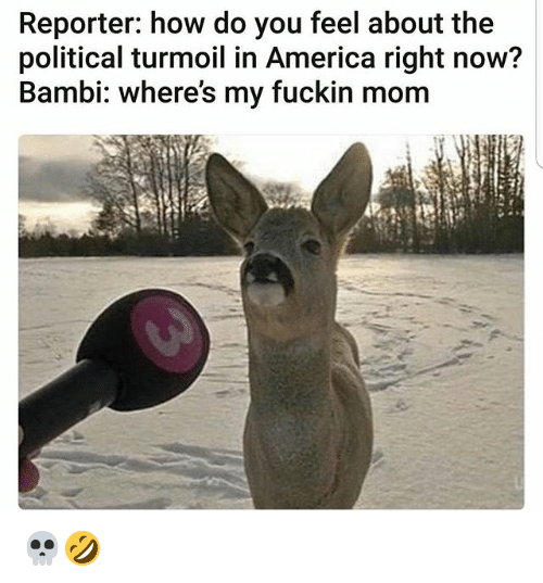Bambi: Reporter: how do you feel about the  political turmoil in America right now?  Bambi: where's my fuckin mom 💀🤣