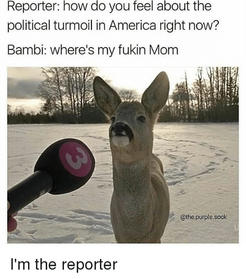Bambi: Reporter: how do you feel about the  political turmoil in America right now?  Bambi: where's my fukin Mom  @the purple. sock I'm the reporter