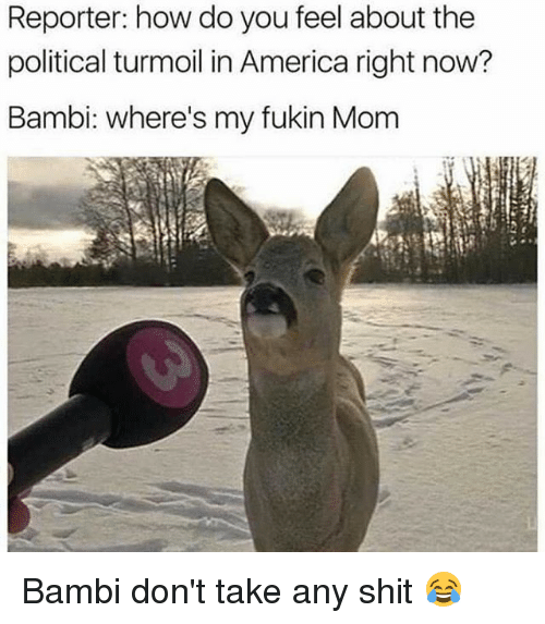 Bambi: Reporter: how do you feel about the  political turmoil in America right now?  Bambi: where's my fukin Mom Bambi don't take any shit 😂