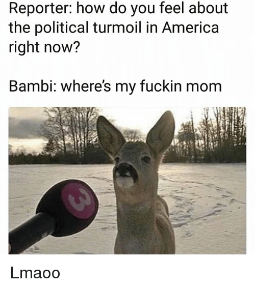 Bambi: Reporter: how do you feel about  the political turmoil in America  right now?  Bambi: where's my fuckin mom Lmaoo