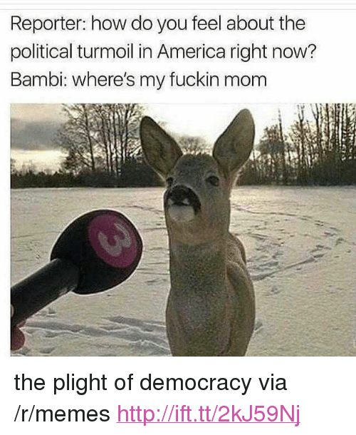 """Bambi: Reporter: how do you feel about the  political turmoil in America right now?  Bambi: where's my fuckin mom <p>the plight of democracy via /r/memes <a href=""""http://ift.tt/2kJ59Nj"""">http://ift.tt/2kJ59Nj</a></p>"""