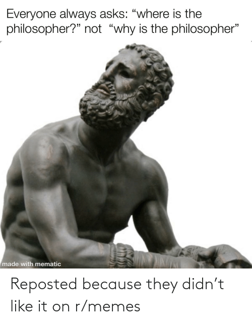 R Memes: Reposted because they didn't like it on r/memes