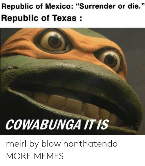 "republic: Republic of Mexico: ""Surrender or die.""  Republic of Texas:  COWABUNGA ITIS meirl by blowinonthatendo MORE MEMES"