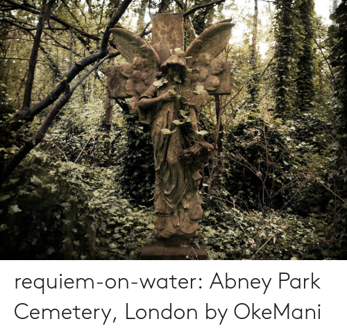 Tumblr, Blog, and Deviantart: requiem-on-water:  Abney Park Cemetery, London by OkeMani
