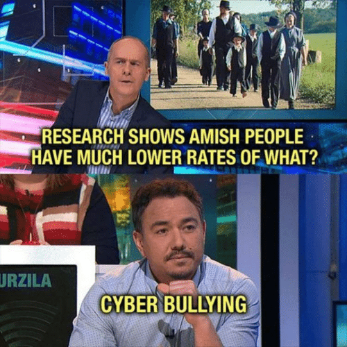 Amish, Bullying, and What: RESEARCH SHOWS AMISH PEOPLE  HAVE MUCH LOWER RATES OF WHAT?  URZILA  CYBER BULLYING