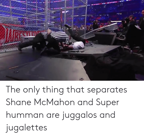 Shane McMahon, Wrestling, and World Wrestling Entertainment: RESL The only thing that separates Shane McMahon and Super humman are juggalos and jugalettes