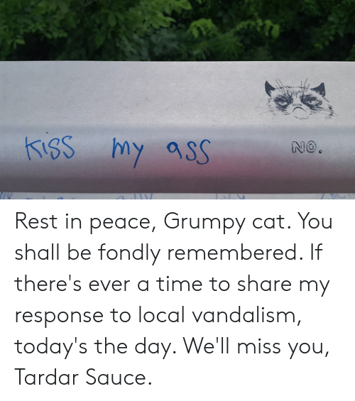 Tardar Sauce: Rest in peace, Grumpy cat. You shall be fondly remembered. If there's ever a time to share my response to local vandalism, today's the day. We'll miss you, Tardar Sauce.