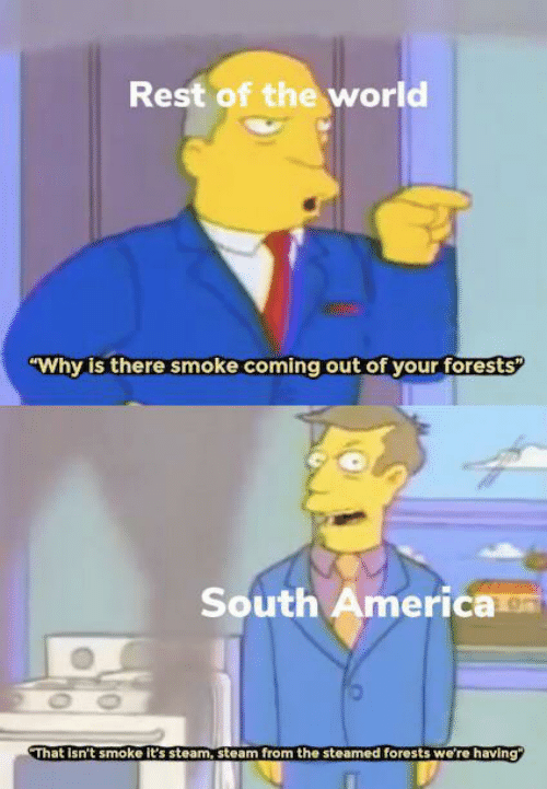 "steam: Rest of the world  ""Why is there smoke coming out of your forests  South America  OO  That Isn't smoke it's steam, steam from the steamed forests we're having"