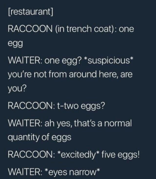 Quantity: [restaurant]  RACCOON (in trench coat): one  egg  WAITER: one egg? *suspicious*  you're not from around here, are  you?  RACCOON: t-two eggs?  WAITER: ah yes, that's a normal  quantity of eggs  RACCOON: *excitedly* five eggs!  WAITER: *eyes narrow*