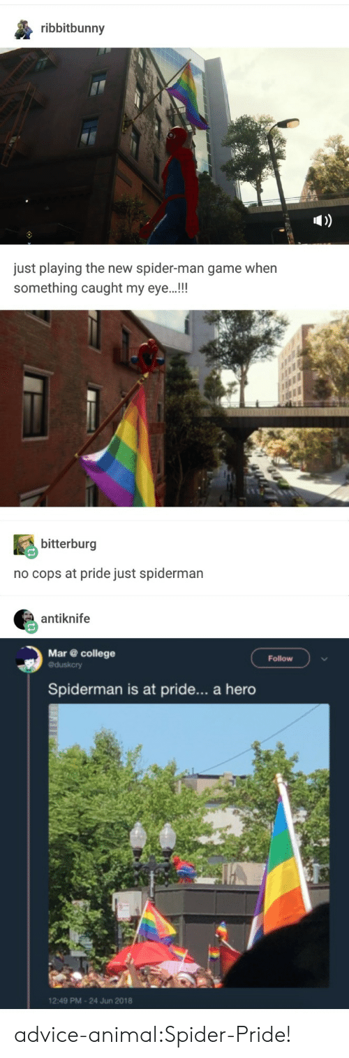 Advice, College, and Spider: ribbitbunny  just playing the new spider-man game when  something caught my eye.!!  bitterburg  no cops at pride just spiderman  antiknife  Mar@ college  Follow  Spiderman is at pride... a hero  2:49 PM-24 Jun 2018 advice-animal:Spider-Pride!
