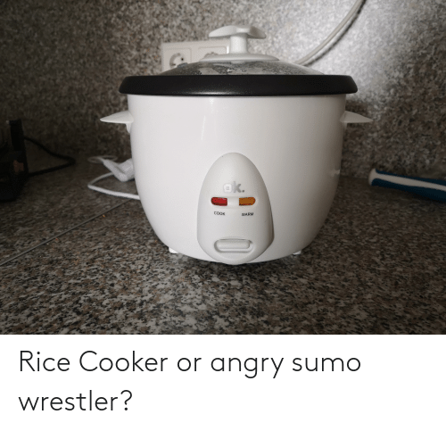 sumo: Rice Cooker or angry sumo wrestler?
