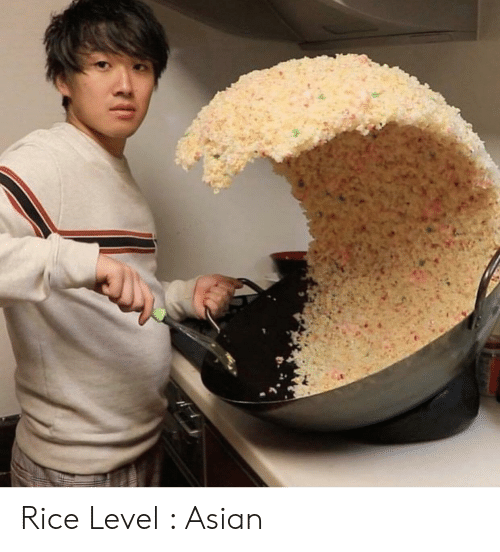Asian, Rice, and Level: Rice Level : Asian