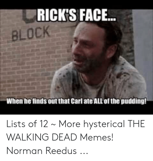 the walking dead memes: RICK'S FACE...  BLOCK  When he finds out that Carl ate ALL of the pudding! Lists of 12 ~ More hysterical THE WALKING DEAD Memes! Norman Reedus ...