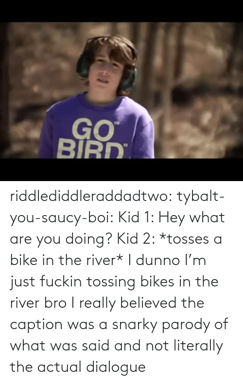 really: riddlediddleraddadtwo:  tybalt-you-saucy-boi:  Kid 1: Hey what are you doing? Kid 2: *tosses a bike in the river* I dunno I'm just fuckin tossing bikes in the river bro    I really believed the caption was a snarky parody of what was said and not literally the actual dialogue