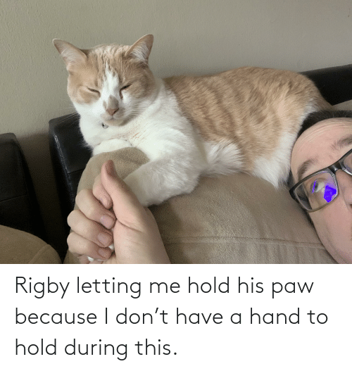rigby: Rigby letting me hold his paw because I don't have a hand to hold during this.