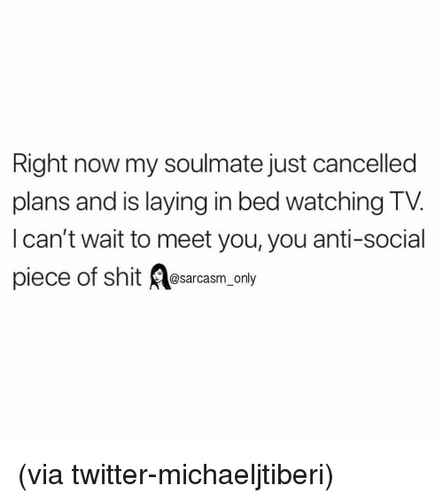 Sarcasm Only: Right now my soulmate just cancelled  plans and is laying in bed watching TV.  l can't wait to meet you, you anti-social  piec  e of shit @sarcasm_only (via twitter-michaeljtiberi)