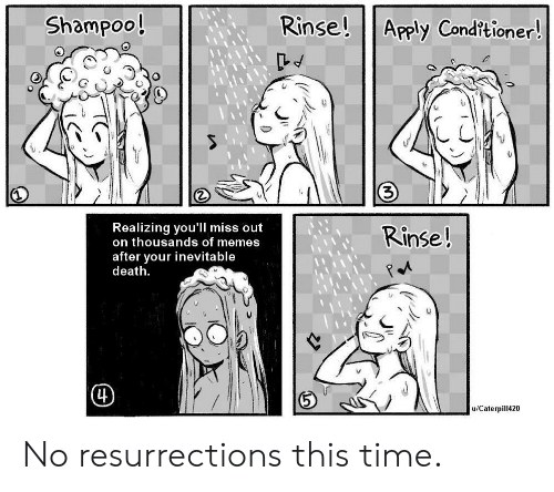 Memes, Death, and Time: Rinse!  Shampoo!  Apply Conditioner!  Realizing you'll miss out  on thousands of memes  Rinse!  after your inevitable  death  (4)  u/Caterpill420 No resurrections this time.