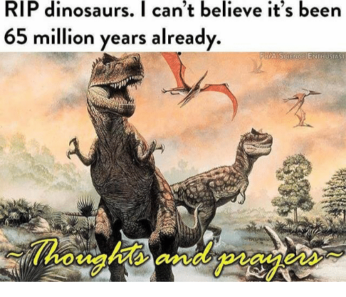 Eas: RIP dinosaurs. I can't believe it's been  65 million years already  FBIA SCIENGE ENTHUSIAST  Thoughts andpiay  eas