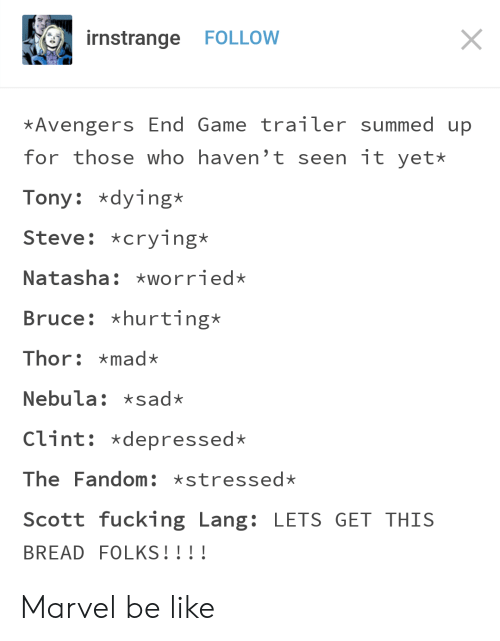 Summed Up: rnstrange FOLLOW  Avengers End Game trailer summed up  for those who haven't seen it yet*  Tony dying*  Steve: *crying*  Natasha: worried*  Bruce: *hurting*  Thor: mad*  Nebula: sad*  Clint: *depressed*  The Fandom xstressed*  Scott fucking Lang: LETS GET THIS  BREAD FOLKS!!!! Marvel be like