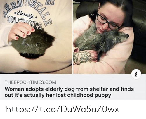 Memes, Lost, and Puppy: RO  +leraity  DIVAMPS  THEEPOCHTIMES.COM  Woman adopts elderly dog from shelter and finds  out it's actually her lost childhood puppy  STALE https://t.co/DuWa5uZ0wx
