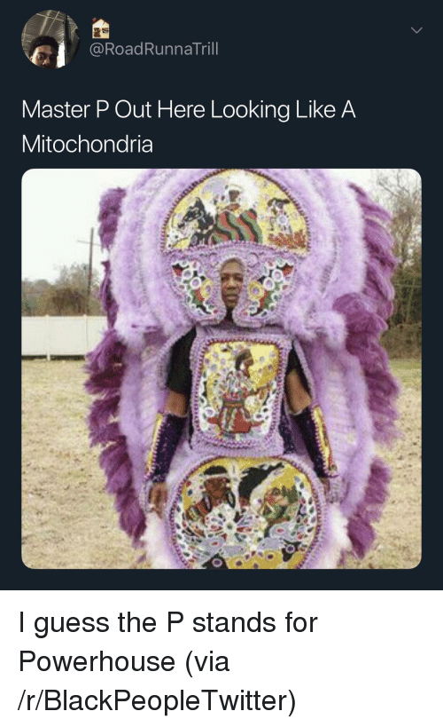 Blackpeopletwitter, Master P, and Guess: @RoadRunnaTril  Master P Out Here Looking Like A  Mitochondria I guess the P stands for Powerhouse (via /r/BlackPeopleTwitter)