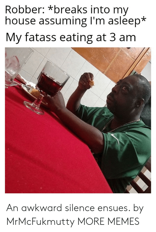 Awkward Silence: Robber: *breaks into my  house assuming I'm asleep*  My fatass eating at 3 am An awkward silence ensues. by MrMcFukmutty MORE MEMES