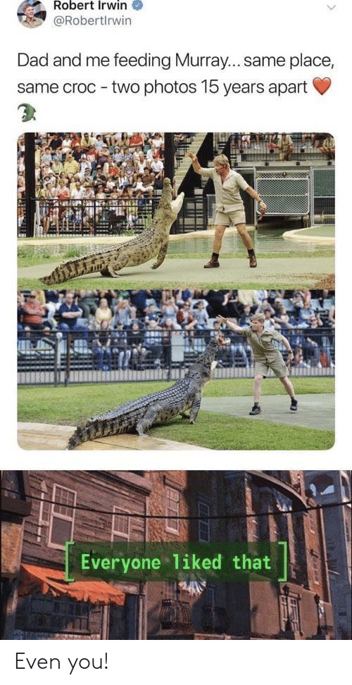 croc: Robert Irwin  @Robertlrwin  Dad and me feeding Murray... same place,  same croc - two photos 15 years apart  Everyone liked that Even you!