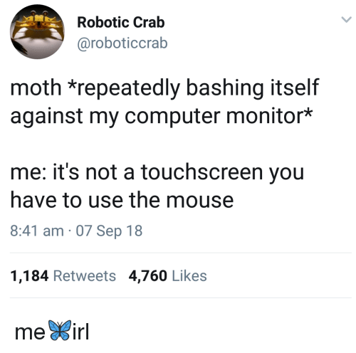 Computer, Mouse, and Crab: Robotic Crab  @roboticcrab  moth *repeatedly bashing itself  against my computer monitor*  me: it's not a touchscreen you  have to use the mouse  8:41 am 07 Sep 18  1,184 Retweets 4,760 Likes me🦋irl