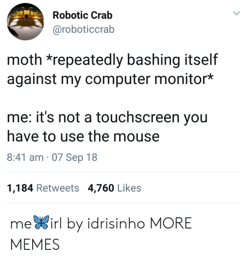 Robotic: Robotic Crab  @roboticcrab  moth *repeatedly bashing itself  against my computer monitor*  me: it's not a touchscreen you  have to use the mouse  8:41 am 07 Sep 18  1,184 Retweets 4,760 Likes me🦋irl by idrisinho MORE MEMES