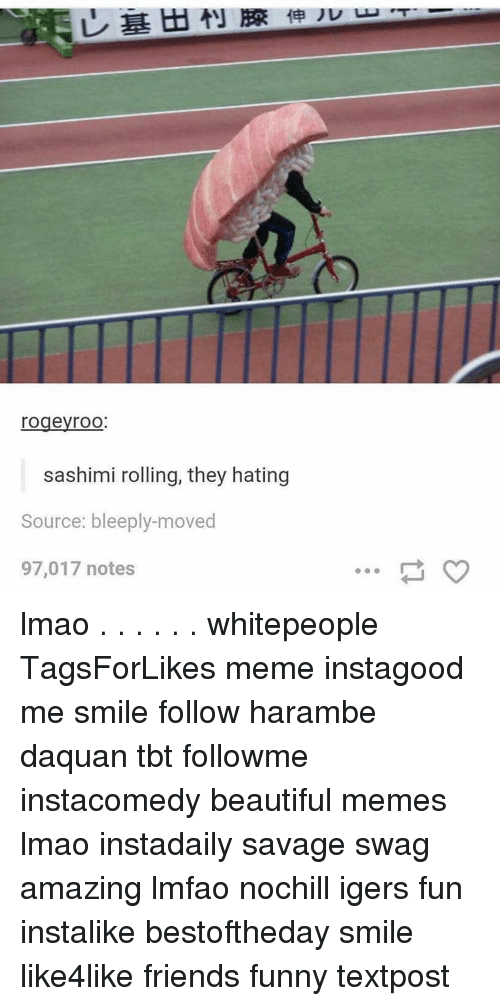 Harambism: rogeyroO  sashimi rolling, they hating  Source: bleeply-moved  97,017 notes lmao . . . . . . whitepeople TagsForLikes meme instagood me smile follow harambe daquan tbt followme instacomedy beautiful memes lmao instadaily savage swag amazing lmfao nochill igers fun instalike bestoftheday smile like4like friends funny textpost