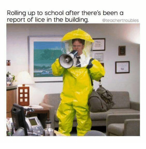 School, Lice, and Been: Rolling up to school after there's been a  report of lice in the building.  teachertroubles