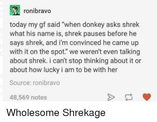 "Donkey, Shrek, and Today: ronibravo  today my gf said ""when donkey asks shrek  what his name is, shrek pauses before he  says shrek, and i'm convinced he came up  with it on the spot."" we weren't even talking  about shrek. i can't stop thinking about it or  about how lucky i am to be with her  Source: ronibravo  48,569 notes Wholesome Shrekage"