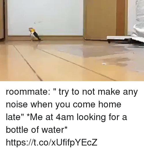 "homed: roommate: "" try to not make any noise when you come home late""   *Me at 4am looking for a bottle of water* https://t.co/xUfifpYEcZ"