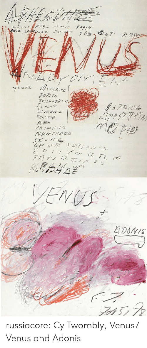 Apple, Tumblr, and Blog: ROSE APPLE 7OPPY T RAA  Aonace  tphendh  EPIShop  57ERI  Li  PON TIA  A REA  MIGNI7 is  NMPHAE  MENIA  6PON  EPIT m3  アロN/ Zm  RAN   VENUS  ADONIS russiacore:  Cy Twombly, Venus/ Venus and Adonis