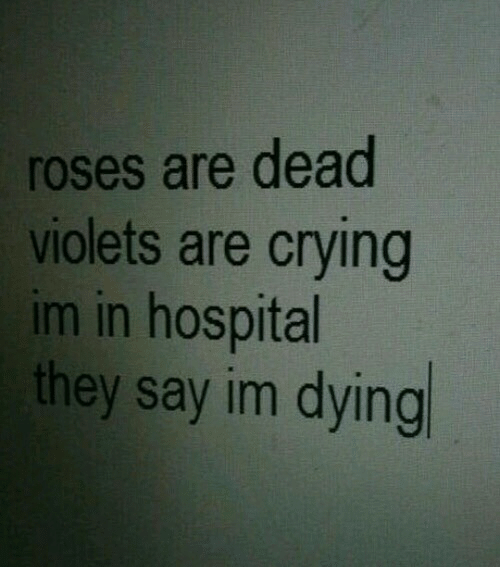Crying, Hospital, and Roses: roses are dead  violets are crying  im in hospital  they say im dying