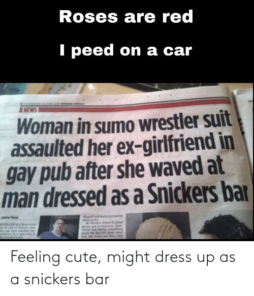 sumo: Roses are red  I peed on a car  NEWS I  Woman in sumo wrestler suit  assaulted her ex-girlfriend in  gay pub after she waved at  man dressed as a Snickers bar  Anke P  Sear deer Feeling cute, might dress up as a snickers bar